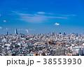 《大阪府》あべのハルカスと住宅街の風景 38553930