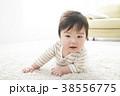 7ヶ月の赤ちゃん 38556775