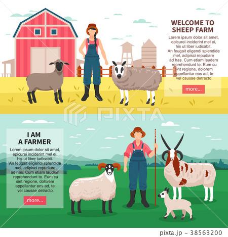 Sheep Breeding Flat Banners 38563200