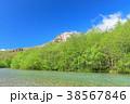 風景 川 山の写真 38567846