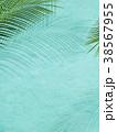 葉 植物 背景のイラスト 38567955