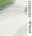葉 植物 背景のイラスト 38568425