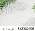 葉 植物 背景のイラスト 38568456