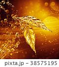 葉っぱ 製 水分のイラスト 38575195