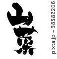 筆文字 毛筆 山菜のイラスト 38582206