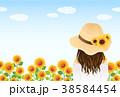 向日葵 38584454