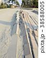 東日本大震災の被害 38588005