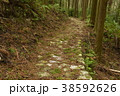 【熊野古道】風伝峠 38592626