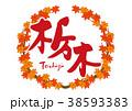 栃木 紅葉 筆文字 水彩画 フレーム 38593383