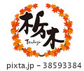 栃木 紅葉 筆文字 水彩画 フレーム 38593384