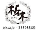 栃木 紅葉 筆文字 水彩画 フレーム 38593385