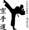 Karate silhouette with signs 38601551