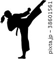 Karate fighter woman 38601561