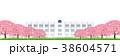 桜 学校 桜並木のイラスト 38604571