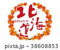 北海道 紅葉 筆文字 秋 フレーム 38608853