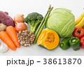 野菜 食材 野菜集合の写真 38613870