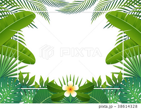 Summer background banner. Vector illustration 38614328