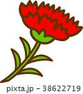 カーネーション 母の日 花のイラスト 38622719