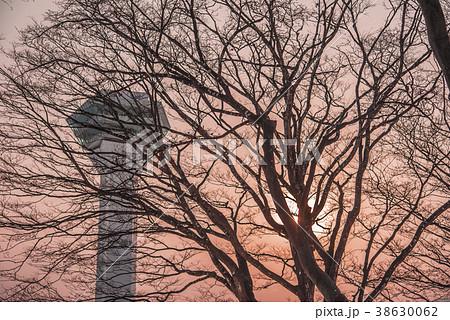 五稜郭タワー 夕焼け 38630062
