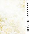 背景-バラ-白 38633364