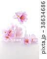 花 花びら 瓶の写真 38634686