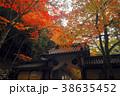 永源寺 総門 紅葉の写真 38635452