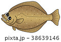 ひらめ 魚 魚類のイラスト 38639146