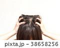 女性 髪 悩みの写真 38658256