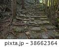 【熊野古道】松本峠 38662364