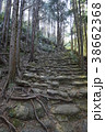 古道 道 森林の写真 38662368
