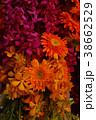 たくさんの花、ガーベラと洋蘭 38662529