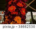 フラワー・アレンジメントのイメージ写真 38662530