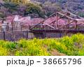 河津桜 桜 花の写真 38665796