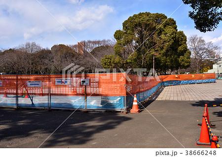 東京オリンピックに向け工事中の大井ふ頭中央海浜公園スポーツの森 38666248