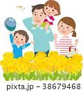菜の花畑を歩く家族 38679468