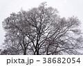 雪景色 屋外 室外の写真 38682054