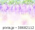 藤 花 植物のイラスト 38682112
