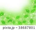 風と葉っぱ 38687801