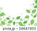 風と葉っぱ 38687803
