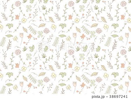 植物柄の手書きイラストの背景 横 38697241