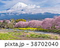 ふじ フジ 富士の写真 38702040
