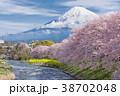 ふじ フジ 富士の写真 38702048