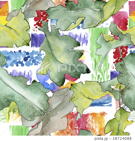 oak leaves pattern in a watercolor style のイラスト素材 38724088