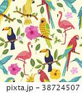 鳥 トロピカル 熱帯のイラスト 38724507