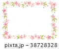 桜 春 花のイラスト 38728328