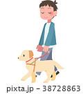 盲導犬と歩く男性 38728863