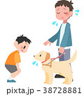 盲導犬に話しかけられて困る男性 38728881