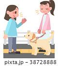 視覚障害者に話しかける女性 38728888