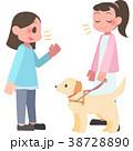 視覚障害者に話しかける女性 38728890