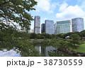 庭園 風景 浜離宮の写真 38730559
